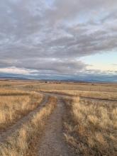 All roads lead to Dillon, Montana & the Montana Center for Horsemanship
